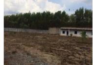 Bán gấp 1,3 hecta đất Long Thành có phòng ăn, nhà khách, tường rào cao 2m, giá siêu rẻ