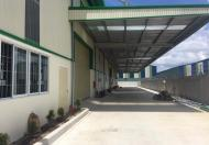 Cho thuê nhà xưởng khu công nghiệp Hải Sơn, Đức Hòa, Long An