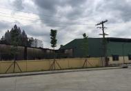 Cho thuê kho xưởng Quận 9 giá: 65.000/m2/th từ 500m2 đến3000m2. QL1A (cạnh Suối Tiên)