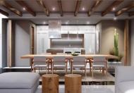 Viettinbank hỗ trợ LS 4.8% tại căn hộ Green River, MT Phạm Thế Hiển, chỉ 14.5 tr/m2. LH 0941403864