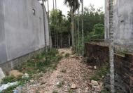 Bán gấp lô đất hẻm 387 Phạm Hữu Lầu, Phước Kiểng, Nhà Bè