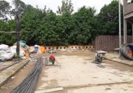 Bán đất đấu giá ngõ 125 Đường Đại Linh, DT 72.6 m2, MT 5.06 m, giá 3,8 tỷ