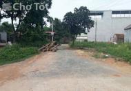 Cho thuê mặt bằng làm lán, xưởng đối diện khu sinh thái Đồi thông Quang Huy, Thạch Thất, Hà Nội