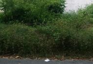 Cần bán gấp lô đất mặt tiền đường 27 Nguyễn Xiển, P. Long Thạnh Mỹ, Q9. 1,2 tỷ/68m2