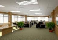 Cho thuê văn phòng đầy đủ tiện nghi khu phố văn phòng Trần Đại Nghĩa, quận Hai Bà Trưng