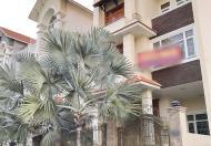 Bán biệt thự song lập mặt tiền đường Him Lam Phường Tân Hưng, Quận 7