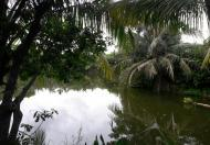 Chuyển nhượng 2,2ha đất gần Sân Bay Cát Bi, Hải An, giá chuyển nhượng 800.000 vnđ/m2 lh 0981912889