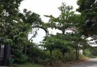 Lô góc gần sông liền kề căn hộ Opal RiverSide hướng ĐN-ĐB khu Minh Phước