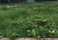 Cần bán gấp lô đất Tân Hòa 2, Hiệp Phú, Quận 9, 67.5m2