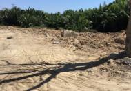 565m2 đất thổ vườn đường Long Thới, đã san lấp cắm cọc, giá 7.8tr/m2