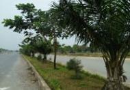 Khu đô thị Long Hưng- Dự án BĐS lớn nhất hiện nay tại khu Đông Sài Gòn