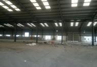 Cho thuê kho bãi, kho xưởng diện tích 2300m2 + 1200m2 tại đường Đình Vũ, quận Hải An, Hải Phòng