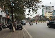Cho thuê gấp nhà Hoàng Quốc Việt - kinh doanh, ô tô đẳng cấp