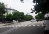 Cần bán gấp đất đấu giá Cầu Giấy mặt phố Trần Đăng Ninh, DT 166m2 MT 7,8m hướng chính Đông
