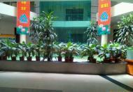 Cho thuê văn phòng hạng B mặt đường ngã tư Lê Trọng Tấn, Thanh Xuân, Hà Nội