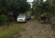 Bán nhà vườn 10.000m2 xã Long Phước, TP Bà Rịa, giá rẻ 2,5 tỷ