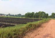 Bán đất vườn ở Trung An, Củ Chi, DT 3000m2 (60 x 50m), SH riêng, LH 0939 81 3696 Hiền