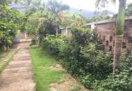 Cho khách nước ngoài thuê biệt thự nhà vườn trang trại tại Minh Phú, Sóc Sơn, Hà Nội