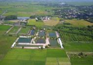 Bán nhà hàng cà phê, trang trại, khu nghỉ dưỡng tại đường 22B, Gò Dầu, Tây Ninh