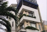 Villa mini tuyệt đẹp khu nội bộ phường Tân Định, 46 Trần Khánh Dư, Q1