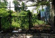 Bán đất HXH đường Lê Văn Lương, Phước Kiển, Nhà Bè, 9x25m giá bán 32tr/m2, còn thương lượng