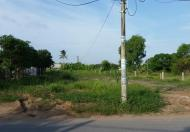 Bán 4950 m2 đất Bình Chánh, Hương Lộ 11, ngang 70m, chỉ 1,3 tr/m2