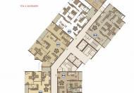 Cần bán gấp căn hộ 03 tháp A tầng 20 CCCC Mandarin Garden, Hoàng Minh Giám