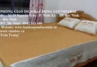Cho thuê căn hộ chung cư Cát Tường tại trung tâm TP.Bắc Ninh