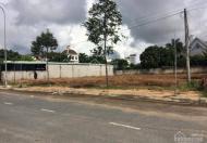 Cho thuê đất mặt tiền đường Vành Đai Phi Trường, ngang trên 20m