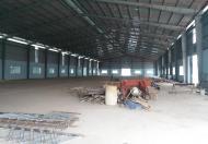 Cho thuê nhà xưởng giá rẻ tại Hoằng Hóa, Thanh Hóa, DT 6050m2