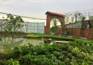 Đặt biệt chính thức mở bán 20 lô góc mặt tiền Hùng Vương, biệt thự vườn xanh và khu phố TM
