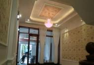 Nhà đường Đoàn Giỏi, DT 4x14m, SHR, Tân Phú