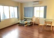 Cho thuê căn hộ cao cấp tại Hồ Ba Mẫu, Lê Duẩn, Xã Đàn, DT 60m2 1PK, 1PN giá 7,5tr/tháng