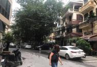 Bán nhà Phương Mai, quận Đống Đa, 66 m2,5tầng, kinh doanh sầm uất, ô tô tránh