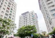 Bán gấp căn hộ Hòn Ngọc Phương Nam, Quận 8