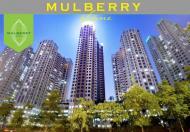 Cần bán gấp căn hộ 08 tòa B Mulberry lane tầng trung ban công đông nam.diện tích 114 m2.
