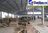Bán nhà xưởng gỗ 10.000 m2 thị xã Tân Uyên, Bình Dương, 20 tỷ