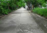 Ngôi nhà xanh định cư lâu dài, sân vườn, ngang 5.2m. Sổ hồng, đường Lê Văn Lương