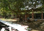 Đất trống, cho thuê lâu dài tại TP Trà Vinh, giá Thỏa thuận, 5000m2