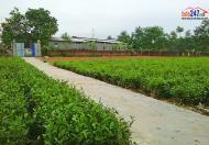 Bán 2040m2 đất thổ cư và đất nông nghiệp có 2 SĐCC xã Phúc Thuận, Phổ Yên, Thái Nguyên