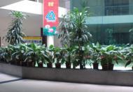 Cho thuê văn phòng chuyên nghiệp đầy đủ tiện nghi mặt phố Lê Trọng Tấn quậnThanh Xuân, Hà nội 0936213628 -0986206161