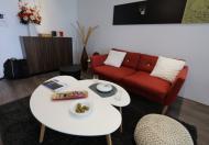 Chính chủ cho thuê căn hộ tại chung cư Platinum Residences, DT: 115m2, 2PN, giá 17 triệu/tháng