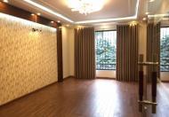 Chính chủ bán nhà mặt phố Vũ Ngọc Phan, Láng Hạ, Đống Đa 90m2x7 tầng thang máy 26.5 tỷ