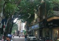 Tòa nhà văn phòng trung tâm phố Nguyễn Công Hoan, Ba Đình, 14.7 tỷ.