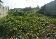 Bán gấp 484m2 đất vườn, MT Lê Văn Lương, Nhà Bè, SHR, 2.6 tỷ