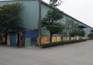 Cho thuê kho xưởng mặt đường 10, huyện An Dương, Hải Phòng
