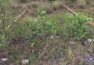 Bán Lô Đất Thích Hợp Kinh Doanh Đối Diện Khu Công Nghệ Cao Samsung, Đường Bưng Ông Thoàn, Phú Hữu Quận 9