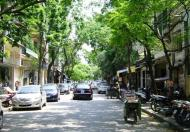 Mặt phố Nguyễn Trường Tộ, Ba Đình, 95m2, 4 tầng, mặt tiền rộng 10m, vị trí quá tuyệt vời