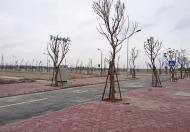 Bán đất liền kề TNR Đồng Văn đường Thanh Mai 4, DT 90m2, 580 triệu/lô