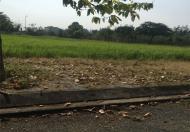 Bán đất nền KDC Phú xuân vạn phát hưng, giá rẻ nhất thị trường chỉ 19.5 triệu/m2. LH:0966222151 Hương.